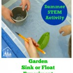 Summer Sink or Float Fun