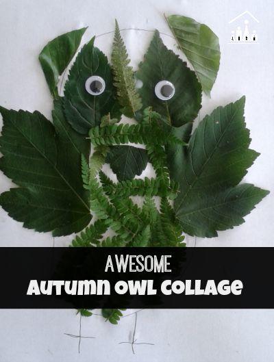 Autumn Owl Leaf Collage