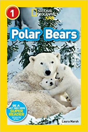 polar bear book for kids 1