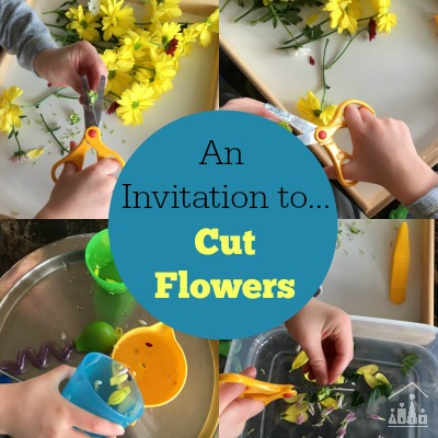 Practising Preschool Cutting Skills on Flowers Water