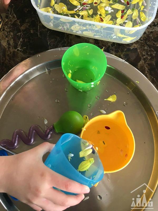 Practising Preschool Cutting Skills on Flowers Water Play