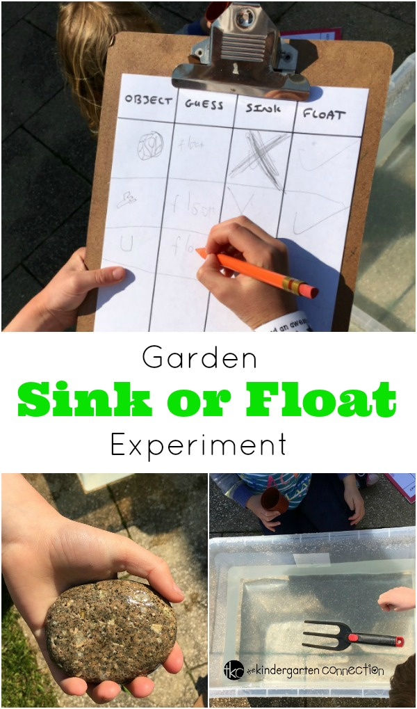 Engage children's natural sense of curiosity and introduce them to the basics of a science experiment in this Garden Sink or Float Activity.