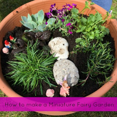 How to make a miniature fairy garden How to make a miniature fairy garden