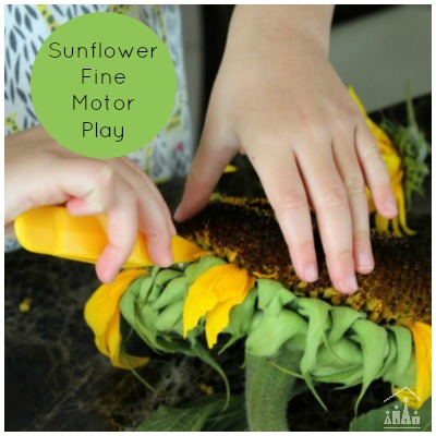 Sunflower Fine Motor Play for Kids