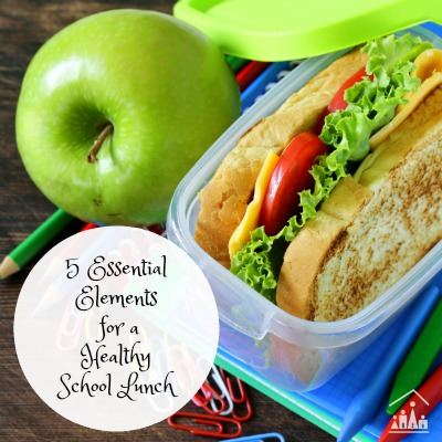 5 essential elements for a healthy school lunch box