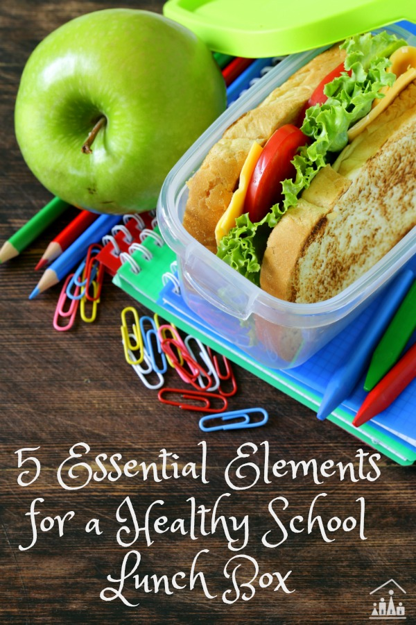 5 Essential Elements To A Healthy School Lunch Box