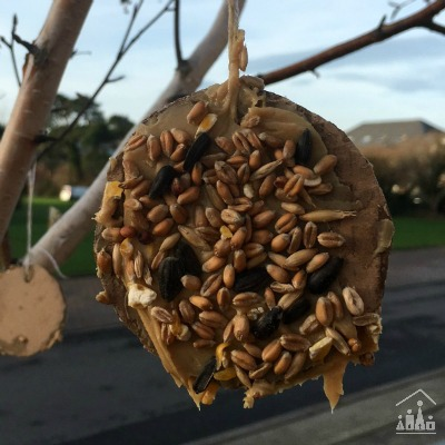 DIY Bird Seed Baubles for Kids to Make this Winter.